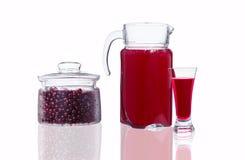 蒸馏瓶和玻璃用蔓越橘汁和一个瓶子有cranberri的 库存照片