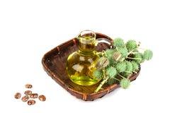 蓖麻油瓶用铸工果子、种子和叶子 库存图片