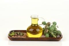蓖麻油瓶用铸工果子、种子和叶子 免版税图库摄影
