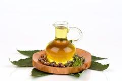 蓖麻油瓶用铸工果子、种子和叶子 库存照片