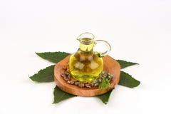 蓖麻油瓶用铸工果子、种子和叶子 图库摄影