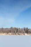蓝天、多雪的森林和湖在芬兰 免版税库存照片