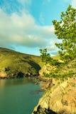 蓝天、松属、岩石和海看法  免版税库存照片