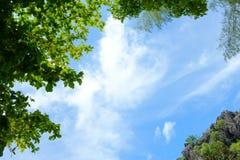 蓝天、白色云彩和绿色树 美好的自然Backgroun 库存图片