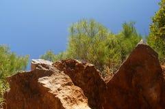 蓝天、蓬松黑松、绿色针和强有力的石头 免版税库存图片