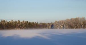 蓝天冬天 库存图片