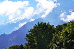 蓝天和云彩、绿色树和冰川在背景中 免版税库存图片