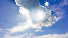 蓝天和森林 库存图片