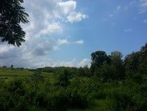 蓝天和绿色山 库存照片