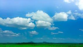 蓝天微小的云彩和领域 库存照片