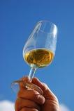 蓝天白葡萄酒 免版税图库摄影