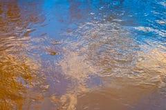 蓝天的反射在一条小河的用被解冻的水在春天日落的4月森林 库存图片