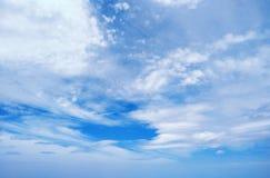 蓝天覆盖背景 阴暗纹理 嘲笑 复制空间 选择聚焦 蠢材 免版税库存图片