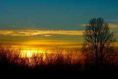 蓝天,美好的日落 图库摄影