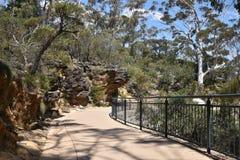 蓝山山脉国家公园足迹, NSW,澳大利亚 库存照片