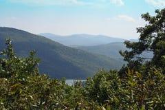 蓝岭山脉在夏天 免版税库存照片