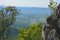 蓝岭山脉岩层在夏天 免版税库存照片