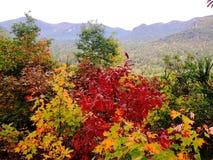 蓝岭山脉, NC Autum视图湖诱剂的 免版税库存图片