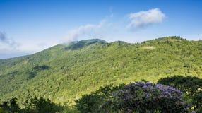 从蓝岭山行车通道看见的大烟山 库存图片