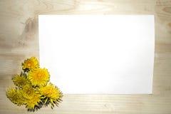 蓝皮书说谎在一张木桌上的黄色蒲公英 免版税库存图片