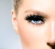 蓝眼睛的秀丽构成 免版税库存图片