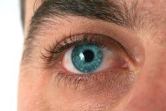 蓝眼睛 免版税库存照片