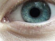 蓝眼睛 免版税图库摄影