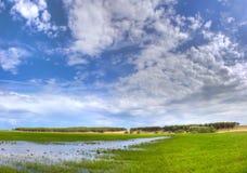 蓝绿色下草甸天空 库存照片