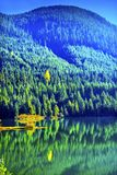 蓝绿色山反射Gold湖秋天Snoqualme通行证W 图库摄影