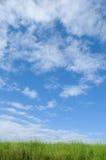 蓝绿色横向天空 免版税图库摄影