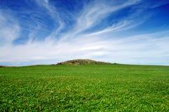 蓝绿色草坪天空 免版税库存图片