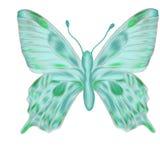 蓝绿色蝴蝶被画的现有量 皇族释放例证