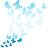 蓝色三角蝴蝶漩涡 飞行蝴蝶图案 在空白背景的蝴蝶 飞行蝴蝶 向量例证