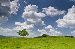 蓝色严重的天空 库存照片