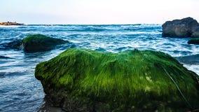 蓝色乳状海滩 免版税图库摄影