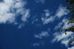 蓝色云彩被填装的天空绿色树在图片的边离开 免版税库存照片