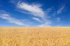蓝色云彩调遣天空麦子 免版税库存图片