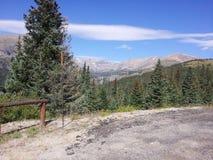 蓝色云杉的树清除天空的大陆分水岭科罗拉多落矶山脉下雪加盖的山 免版税库存图片