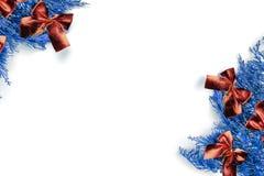 蓝色云杉 美好的红色弓 库存图片