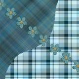 蓝色亚洲柿树仿造格子花呢披肩 免版税图库摄影