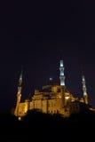 蓝色伊斯坦布尔清真寺晚上火鸡 库存照片