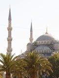 蓝色伊斯坦布尔清真寺火鸡 图库摄影