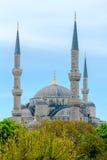 蓝色伊斯坦布尔清真寺 火鸡 免版税库存图片