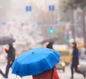 蓝色伞 免版税库存图片