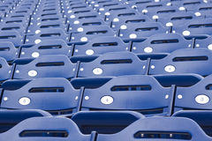 蓝色体育场就座 免版税图库摄影