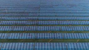 蓝色光致电压的太阳电池板的大领域 鸟瞰图 飞行斜向一边在右边 股票视频