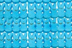 蓝色兔宝宝糖果复活节 免版税库存图片