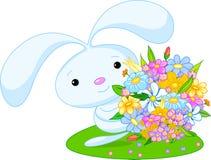 蓝色兔宝宝 库存图片