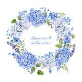 蓝色八仙花属和其他花圆的框架  库存图片