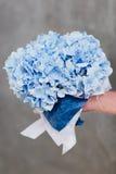 蓝色八仙花属花束  免版税库存照片